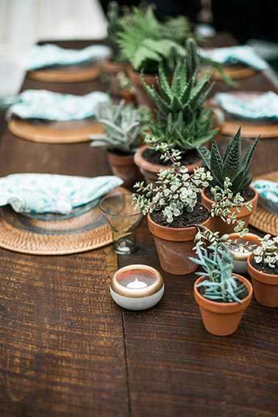 Potted Plants for Wedding | 2018 Wedding Trends